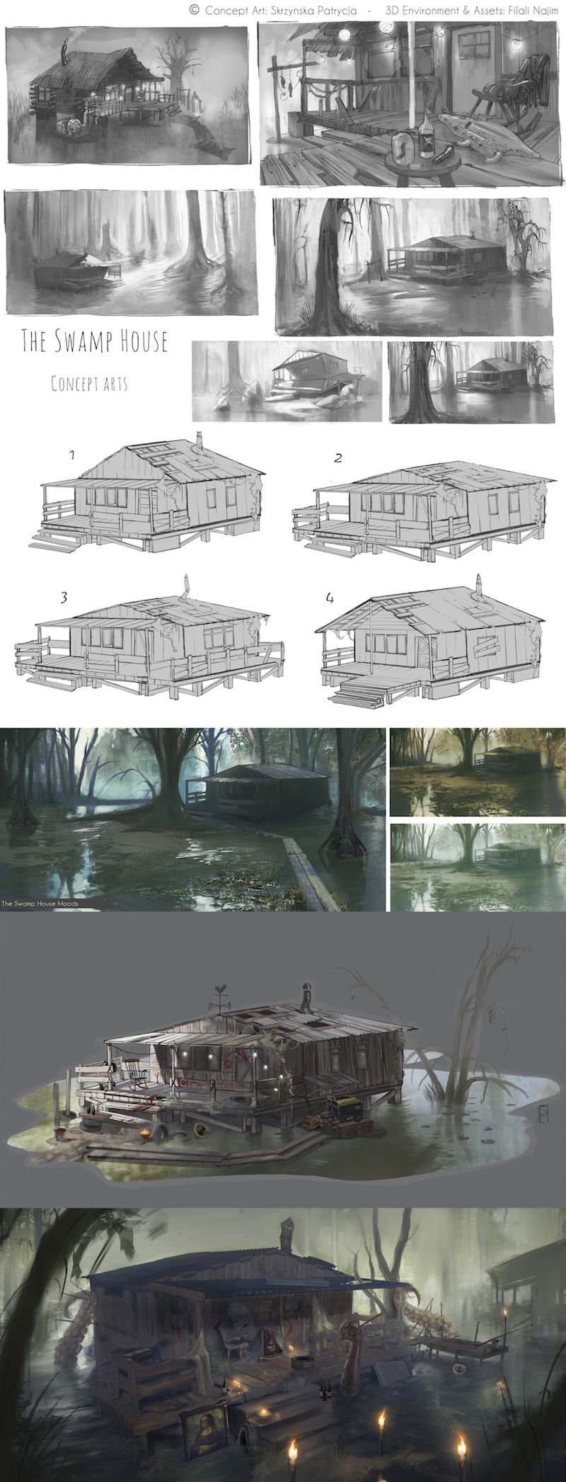 The swamp house